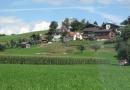 Sommertreffen Berneroberland 2010 (Bild Lechner) (13)