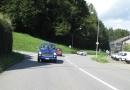 Sommertreffen Berneroberland 2010 (Bild Lechner) (2)