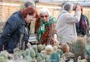 Sammlung Grunder Schorsch Hölstein 5. November 2011-45