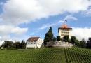 Sommertreffen Sempach - Luzerner Seeland, 7. August 2011 (Bild Vollenweider) (25)