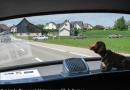 Frühjahrsausfahrt Thurgau, 9. Juni 2013 (Foto Lechner)-21