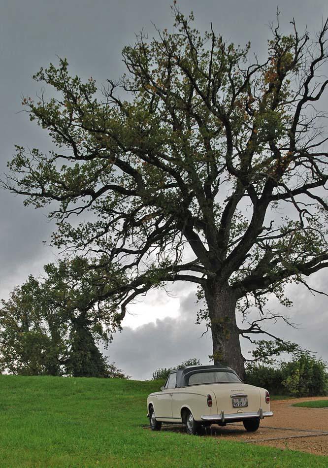 Herbstausfahrt Baselbiet und Schloss Wildenstein 2010