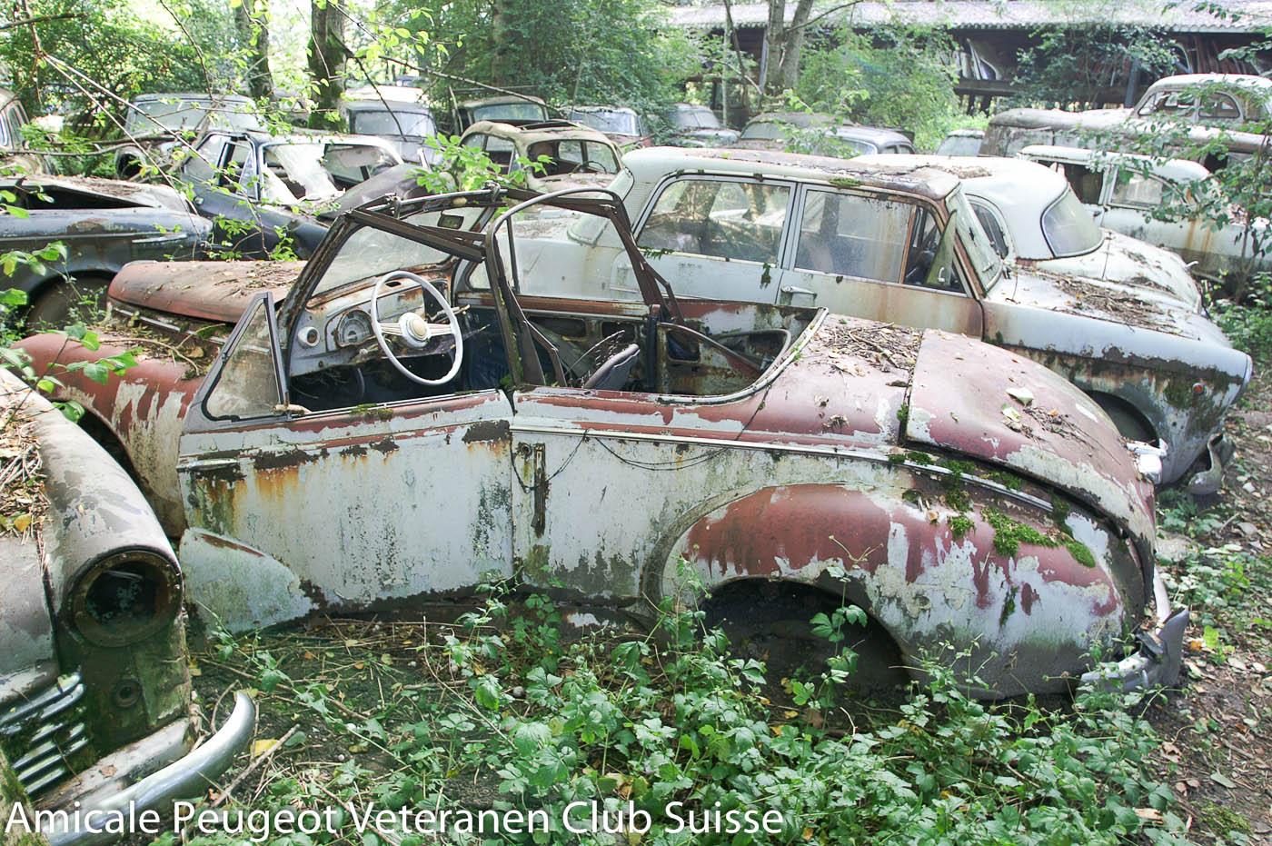 Peugeot 203 Cabriolet auf dem Autofriedhof Messerli in Kaufdorf